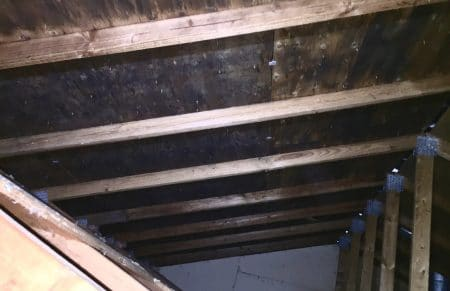 mold along attic sheathing